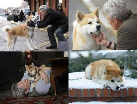 1000+ images about Hachiko on Pinterest   The movie, True