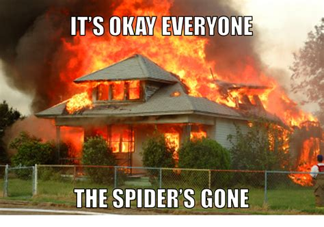 Not a Meme: California Man Sets House On Fire to Kill Spiders