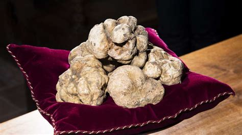 Will the world's most expensive truffle be sold in Dubai