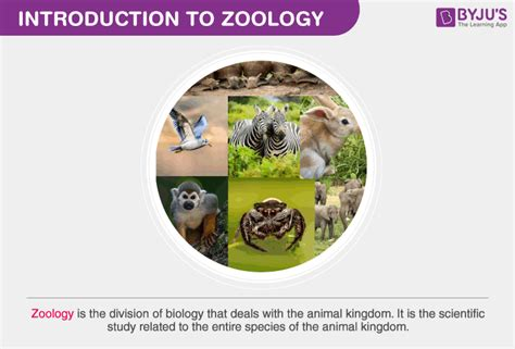CLASSNOTES: Class 11 Zoology Notes